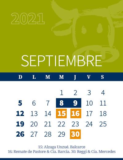 calendario web individual 400x5204-09