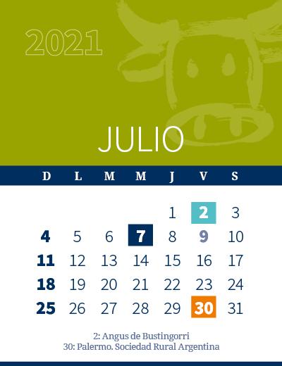 calendario web individual 400x5202