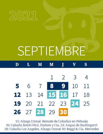 calendario web individual 400x5204 (1)